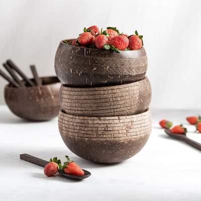 Jungle Culture coconut shell bowls