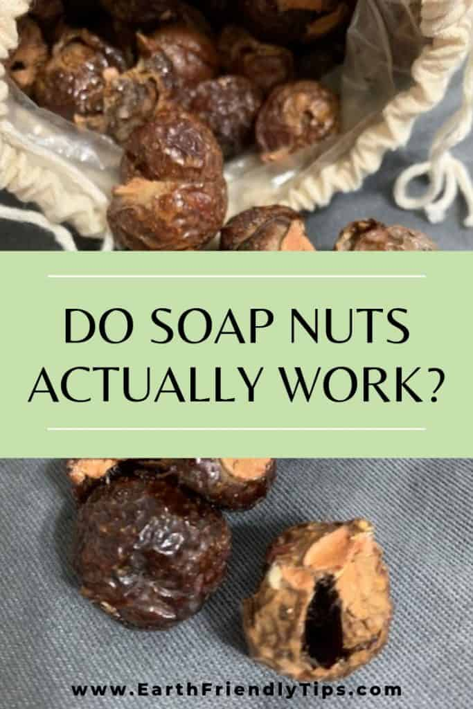 Bag of open soap nuts with text overlay Do Soap Nuts Actually Work