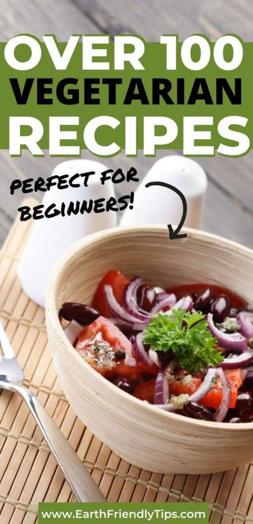 Salad in bowl text overlay Over 100 Vegetarian Recipes Perfect for Beginners