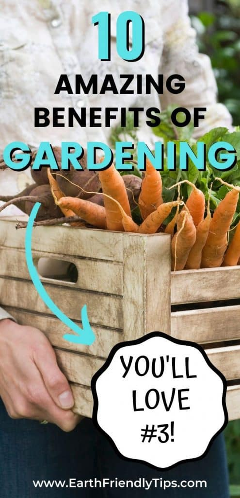 Crate of vegetables with text overlay 10 Amazing Benefits of Gardening