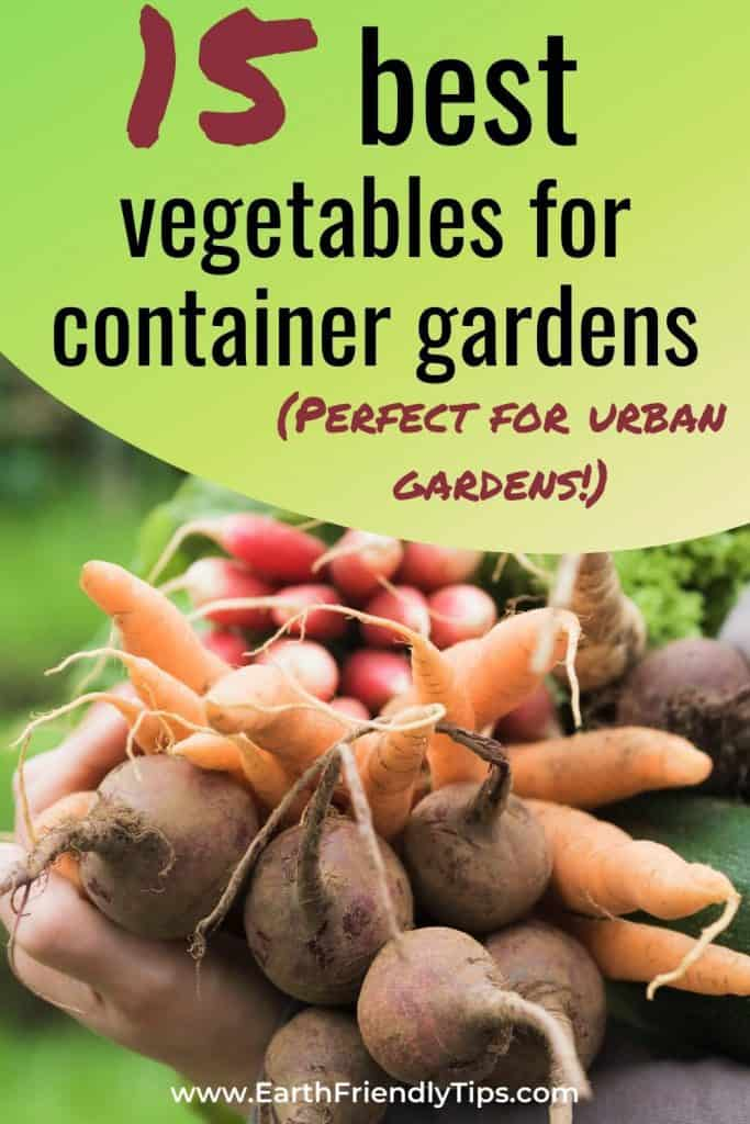 Vegetable bunch with text overlay 15 Best Vegetables for Container Gardens
