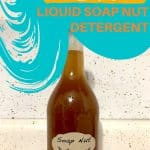 Bottle of soap nut detergent text overlay How to Make DIY Liquid Soap Nut Detergent