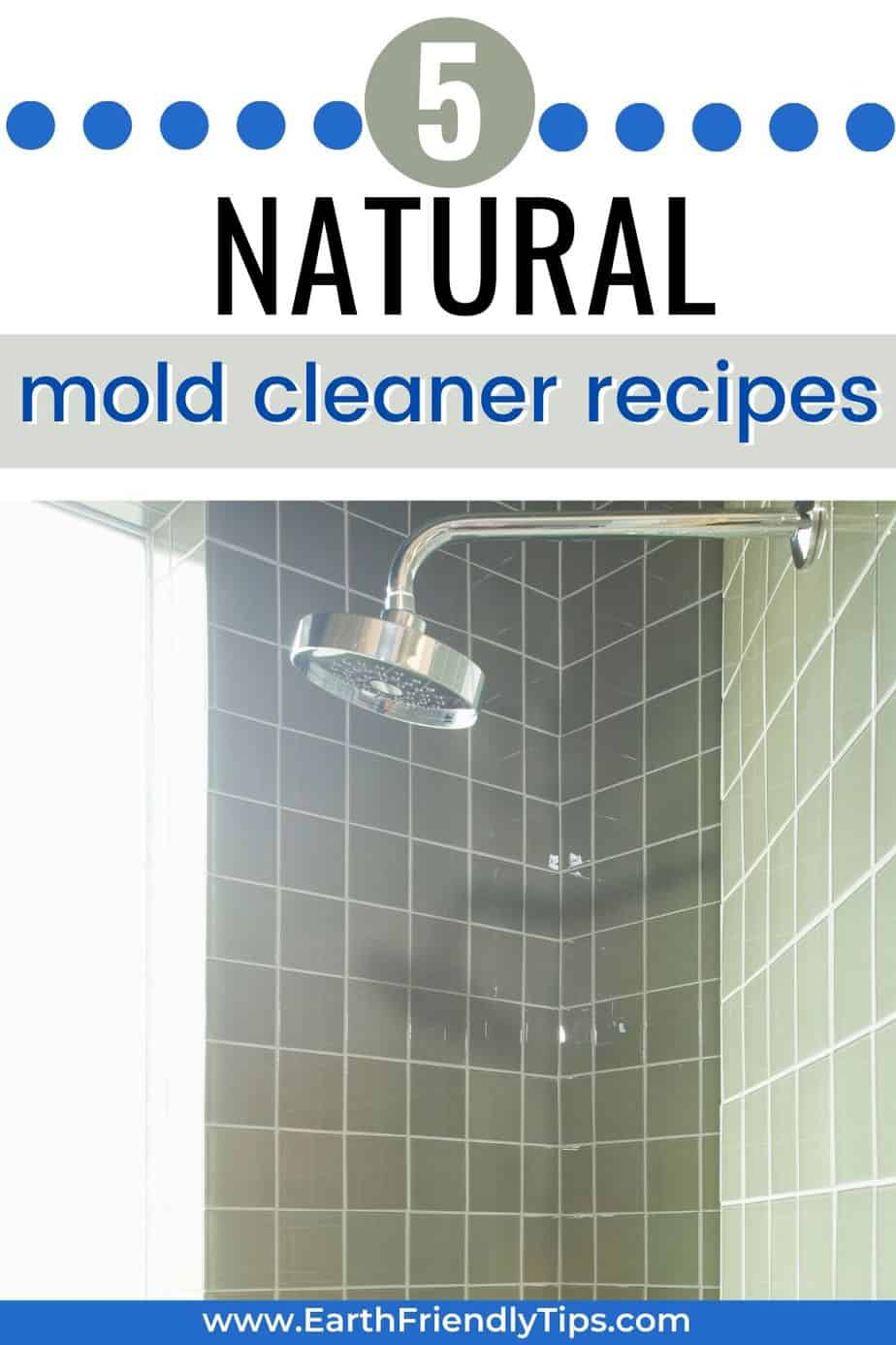 The Best Natural Mold Cleaner Recipe Earth Friendly Tips