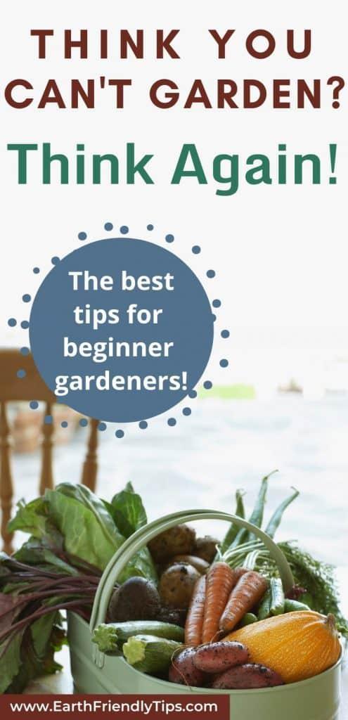 Basket of vegetables text overlay The Best Tips for Beginner Gardeners