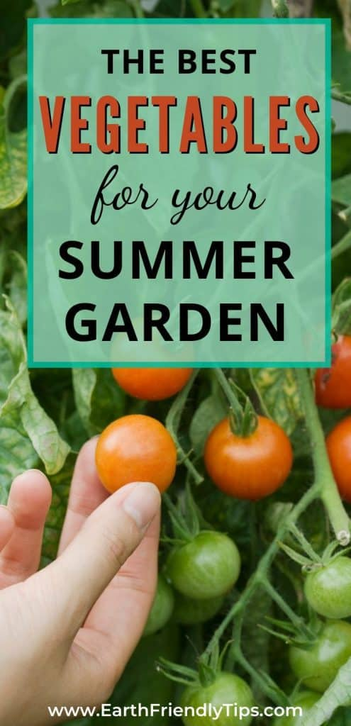 Cherry tomatoes with text overlay The Best Vegetables for Your Summer Garden