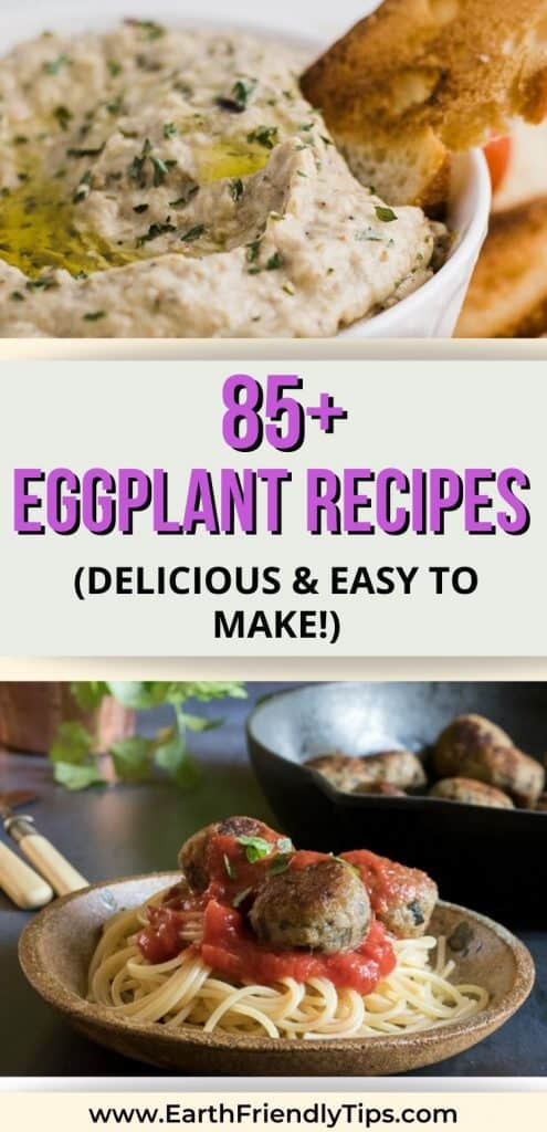 Eggplant dip and eggplant meatballs with text overlay 85+ Eggplant Recipes