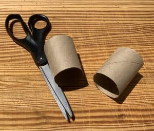 Scissors and toilet paper roll