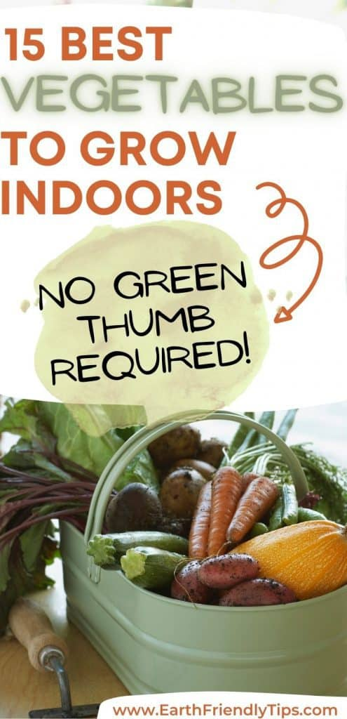 Vegetables in basket on table text overlay 15 Best Vegetables to Grow Indoors