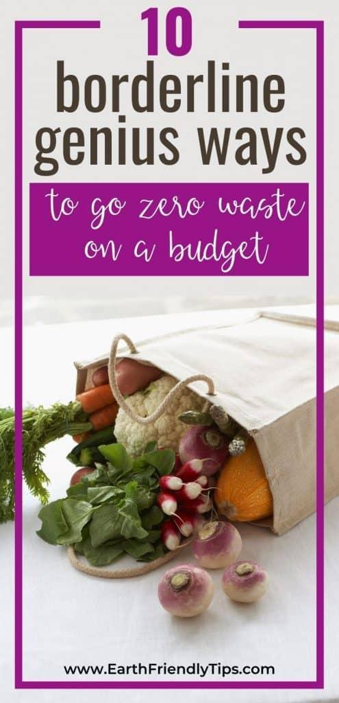 Vegetables in canvas bag text overlay 10 Borderline Genius Ways to go Zero Waste on a Budget