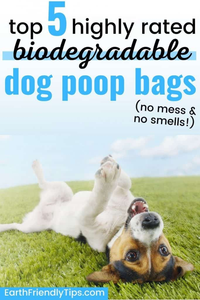 Jack russell terrier lying on back in grass with text overlay Top 5 Highly Rated Biodegradable Dog Poop Bags