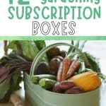 Tin pail full of fresh vegetables with text overlay 12 Outstanding Gardening Subscription Boxes