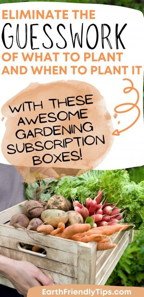 Person holding crate of vegetables with text overlay Eliminate the Guesswork of What to Plant and When to Plant it With These Awesome Gardening Subscription Boxes