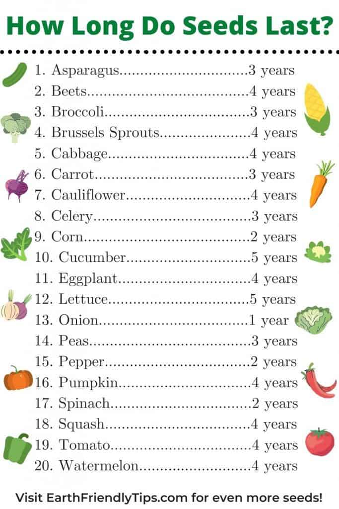 Chart of how long vegetable seeds last