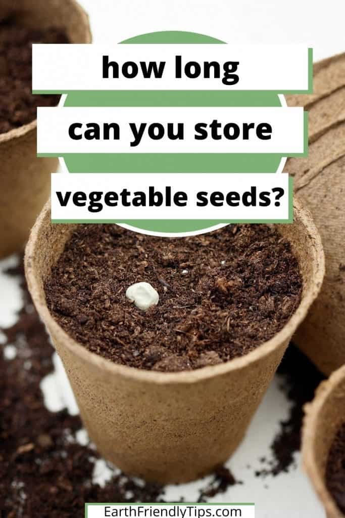 Seed in seed starter pot with text overlay How Long Can You Store Vegetable Seeds
