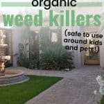 Sidewalk leading to house with text overlay 8 Effective Organic Weed Killers
