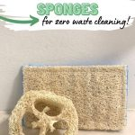 Loofah sponges with text overlay The Best Eco-Friendly Sponges