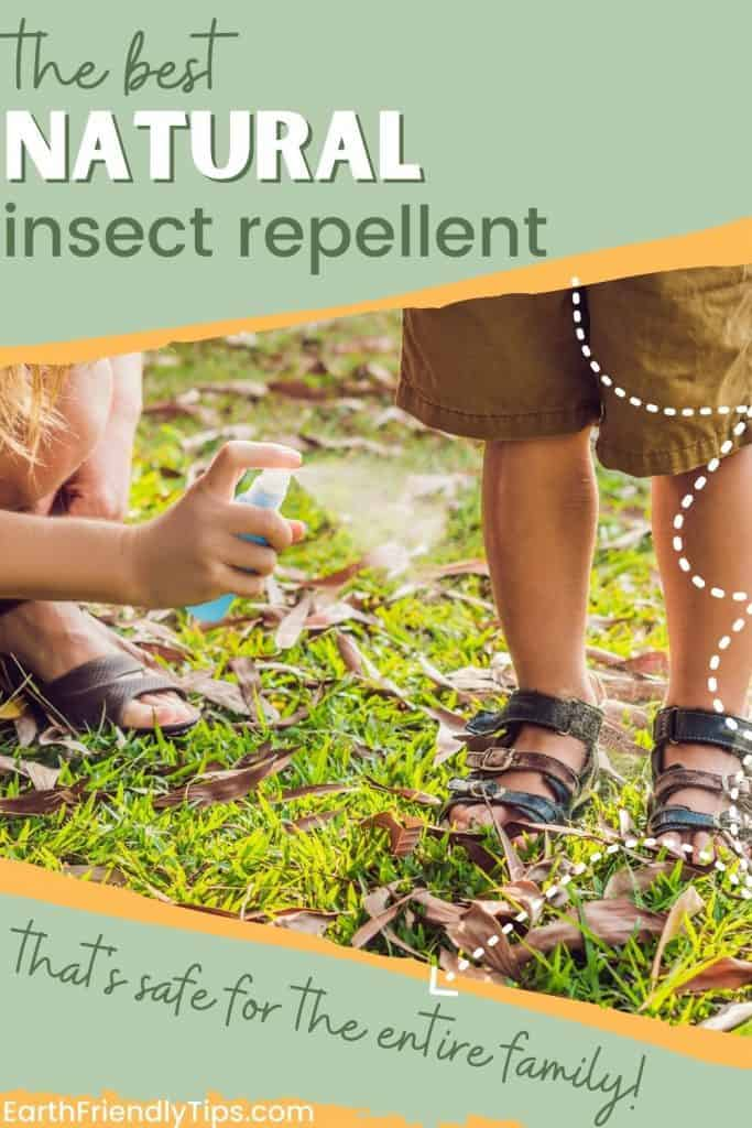 Mom spraying bug repellent on kids' legs with text overlay The Best Natural Insect Repellent