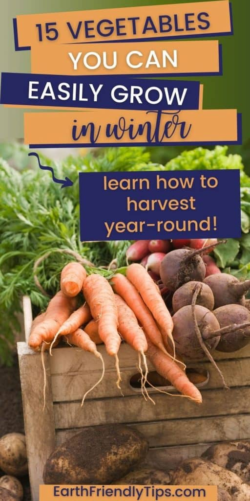 Garden vegetables in wooden crate with text overlay 15 Vegetables You Can Easily Grow in Winter Learn How to Harvest Year-Round