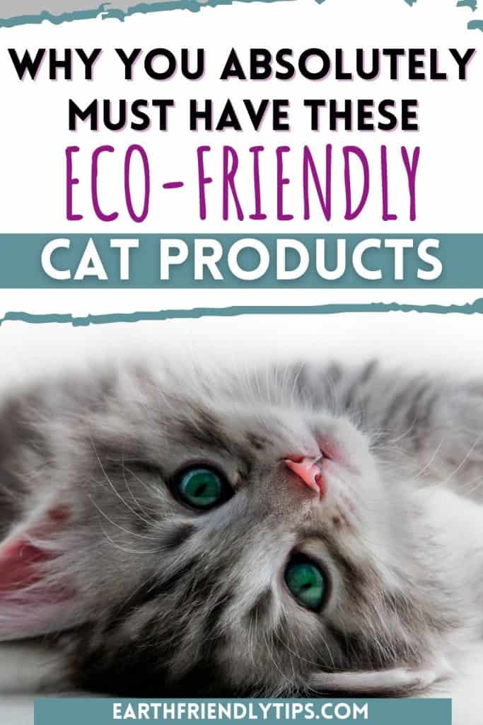 Picture of cute kitten looking at camera with text overlay Why You Absolutely Must Have These Eco-Friendly Cat Products